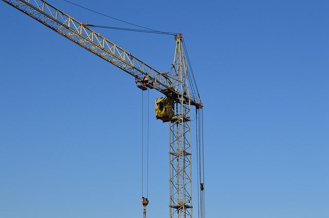 crane-905495_640
