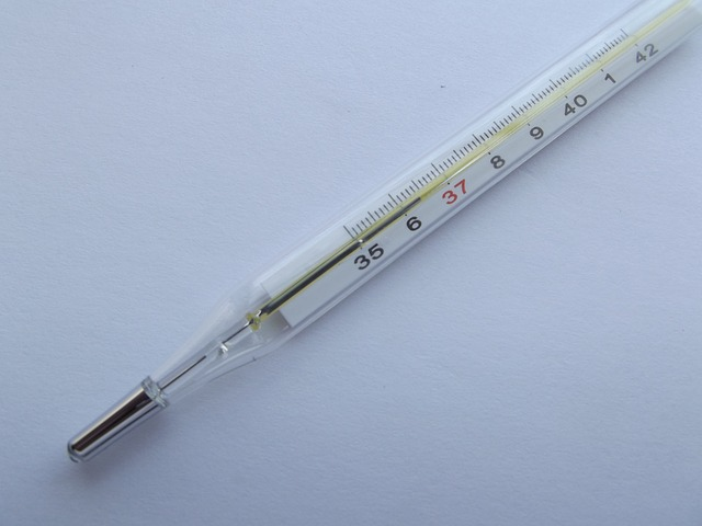 thermometer-106380_640