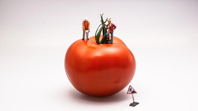 Azienda agroalimentare: la ristrutturazione è servita