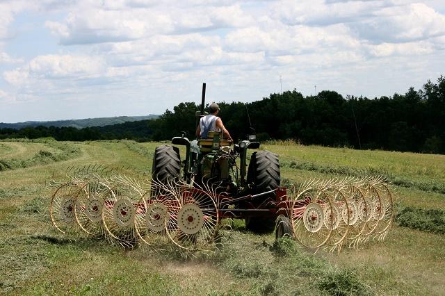 I giovani tornano alla terra: 57mila le imprese under 35 nel settore agroalimentare, +6,8% rispetto al 2016