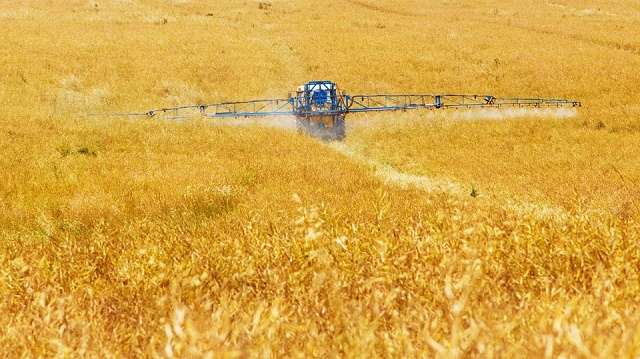 Agricoltura, aumenta l'occupazione nei campi e migliora l'accesso al credito