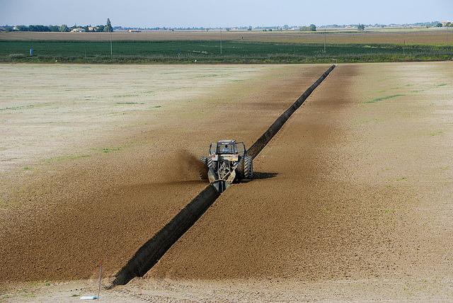 """Confagricoltura: «Quella agricola è una """"ripresina"""", le aziende stanno solo recuperando la forte perdita di valore aggiunto in questi anni»"""