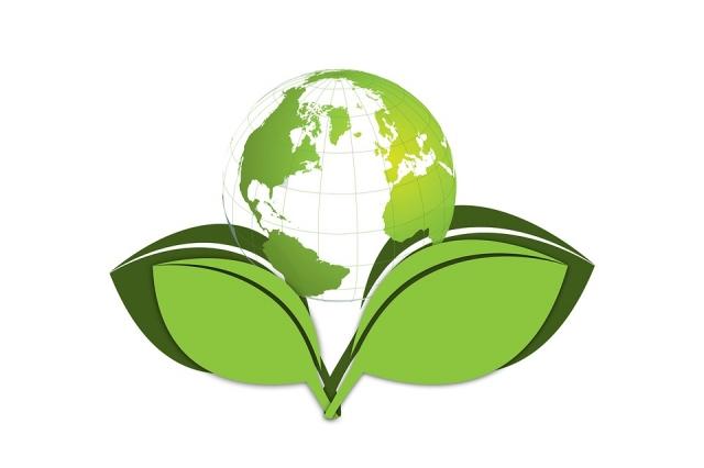 Il mercato biologico: il mondo cambia volto