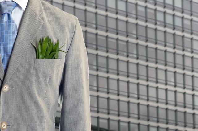 Green economy: la migliore risposta  alla crisi, una sfida per il futuro