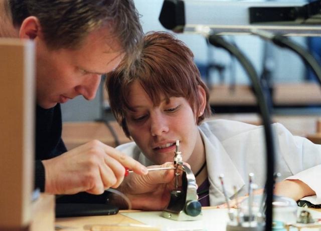 Eu Talent: giovani, PMI e apprendistato