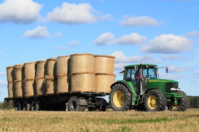 Emilia Romagna, incentivi per la produttività e la sostenibilità dell'agricoltura