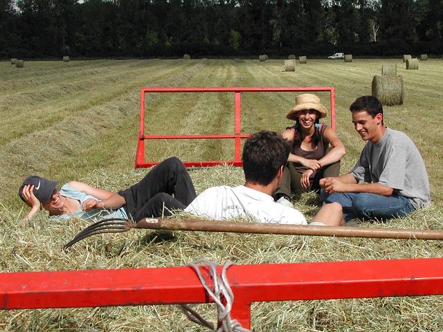 Sud: Coldiretti, 26587 imprese agricole under 35, il 52% del totale