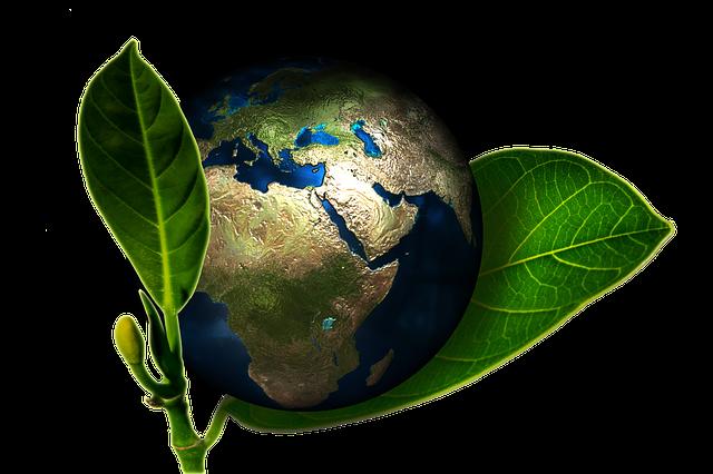 «Il mondo produttivo italiano diventi ambasciatore di sostenibilità»