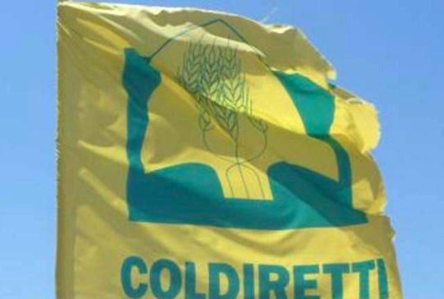 Vacanze: Coldiretti/Ixè, 6 milioni di italiani in zone sisma