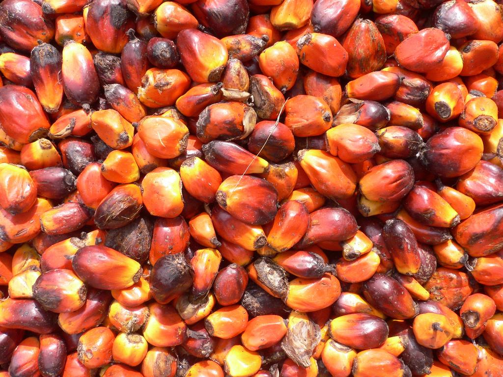 Boom acquisti di prodotti senza olio di palma (+17,6%)