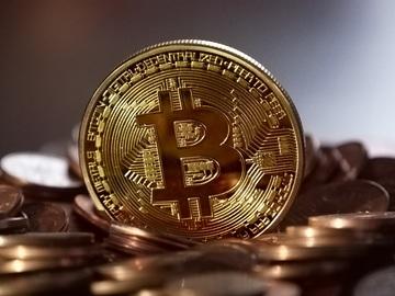 Come l'utilizzo della blockchain nell'agrifood produce valore economico e fiducia nel consumatore