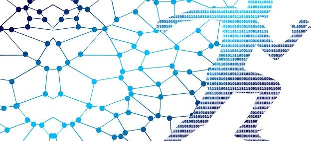 Digital Impact: come guidare la trasformazione digitale