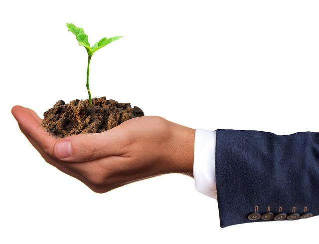 Lombardia: attivo contributo per la costituzione di nuove aziende agricole da parte dei giovani