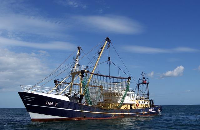Risorse economiche per il settore pesca dell'Emilia Romagna