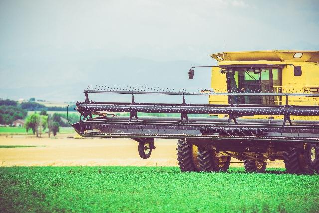 Nel 2018 la produzione dell'agricoltura è aumentata dell'1,5% in volume