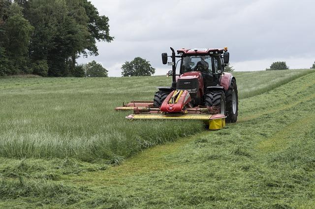 Occupazione in agricoltura: +4% di operai impiegati e +6 delle giornate lavorate