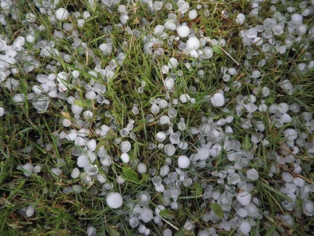 Maltempo: in tutta Italia campagne flagellate da grandinate e raffiche di vento. In Emilia Romagna allerta esondazioni