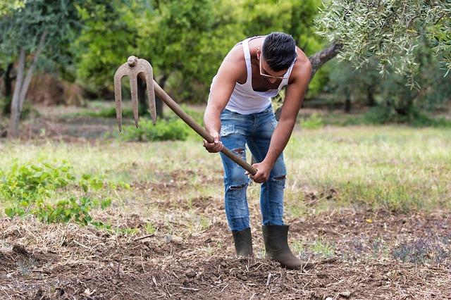 Caporalato in agricoltura: 60 milioni di euro per le azioni di contrasto allo sfruttamento dei lavoratori