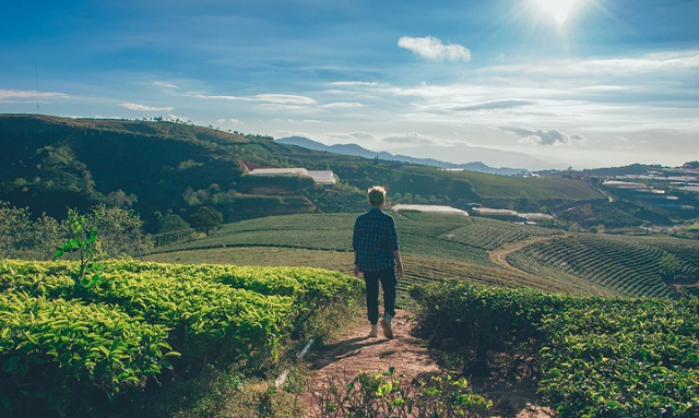 Agricoltura sociale: quarta edizione del bando di Confagricoltura e onlus Senior, in collaborazione con Reale Foundation. In palio 120.000 euro per i tre progetti più innovativi