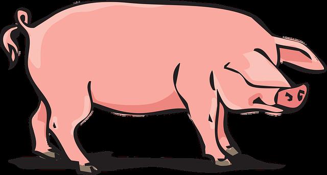 Export, Confagricoltura: operativo l'accordo Italia-Cina sulle carni suine congelate