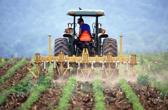 Istat: valore aggiunto dell'agricoltura italiana ancora ai vertici della classifica europea
