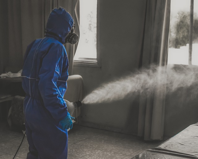 Prevenire il diffondersi del coronavirus in casa e nei luoghi di lavoro, ecco lo studio