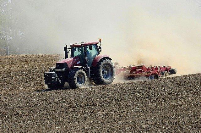 Nel 2019 in flessione il settore agricolo, si rafforza l'agroalimentare
