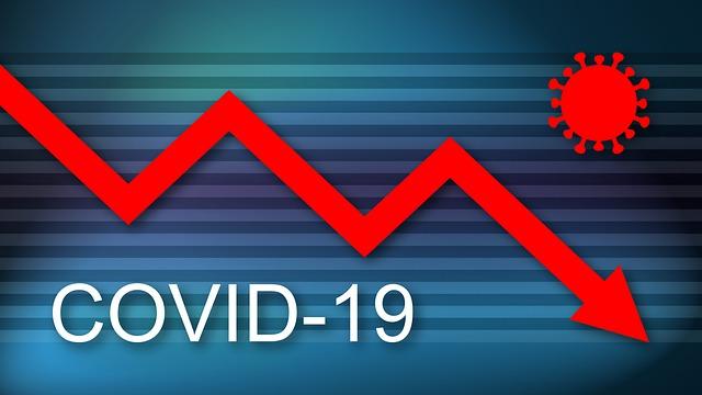 Covid, calo dei livelli di attività per il 94% dei Microsettori nel 2020