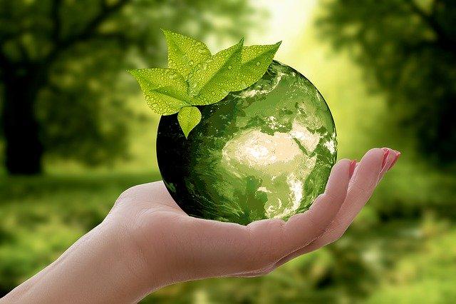 Torna il Premio Impresa Ambiente