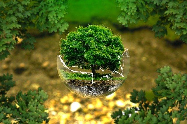 Competere.Eu lancia il test dell'estate su ambiente e sostenibilità per scoprire quanto e come si prendiamo cura del nostro ambiente
