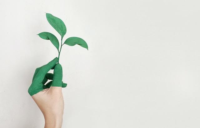 Sostenibilità: ultimi giorni per concorrere al Premio Impresa Ambiente, il più alto riconoscimento italiano per le aziende green