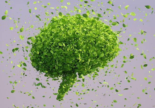 Florence4Sustainability, la call per lo sviluppo sostenibile