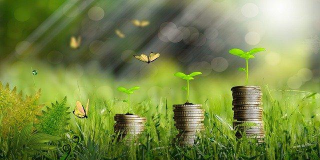441mila imprese italiane negli ultimi 5 anni hanno investito sulla green economy e sulla sostenibilità per affrontare il futuro